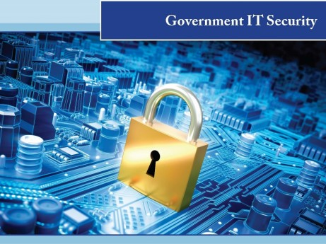 Govt IT Security